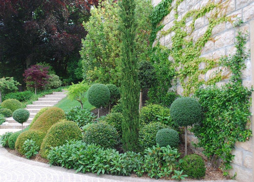 Vente de plantes b j jardinier paysagiste for Vente de plantes