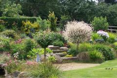 plantes-nouveau-jardin