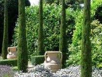 cyprès-plantations_2